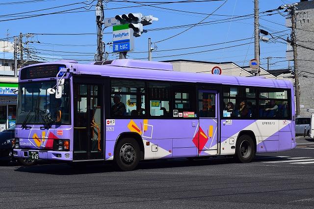 shinkeisei3053