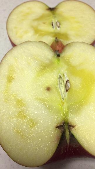 工藤さんりんご2