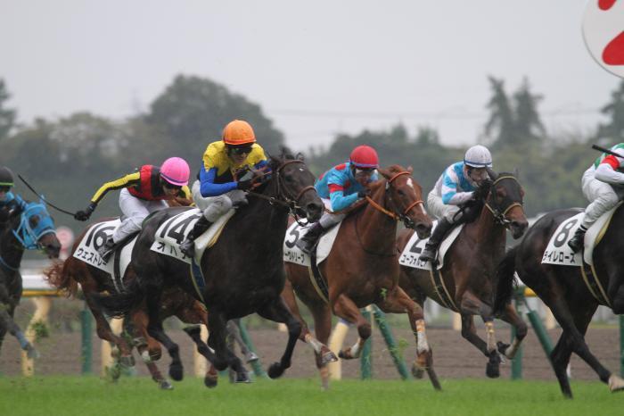 2017 オハナ 新馬戦1