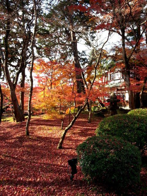 京都観光9