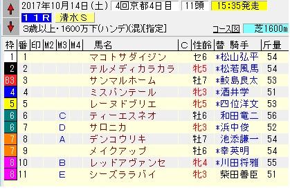 17清水S
