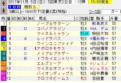 17晩秋S
