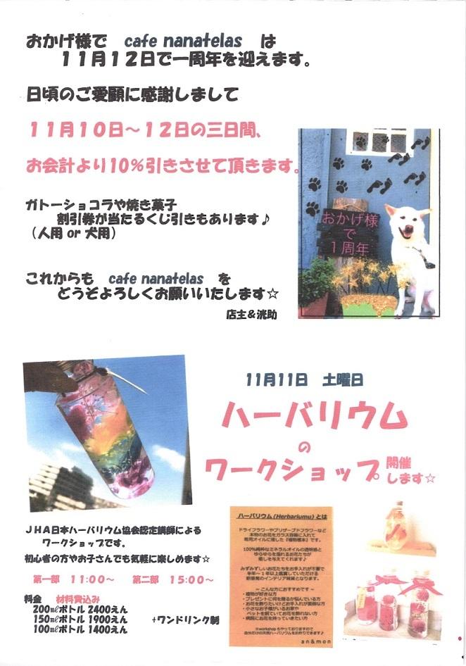 ☆祝 nanatelasさん一周年☆