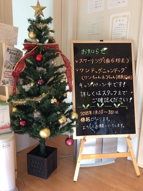 20171205 病院がクリスマスらしくなりました①