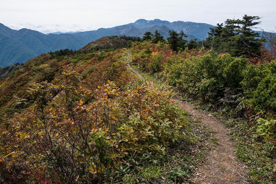 2017.10.01北縦走路_三方岩岳~妙法山13