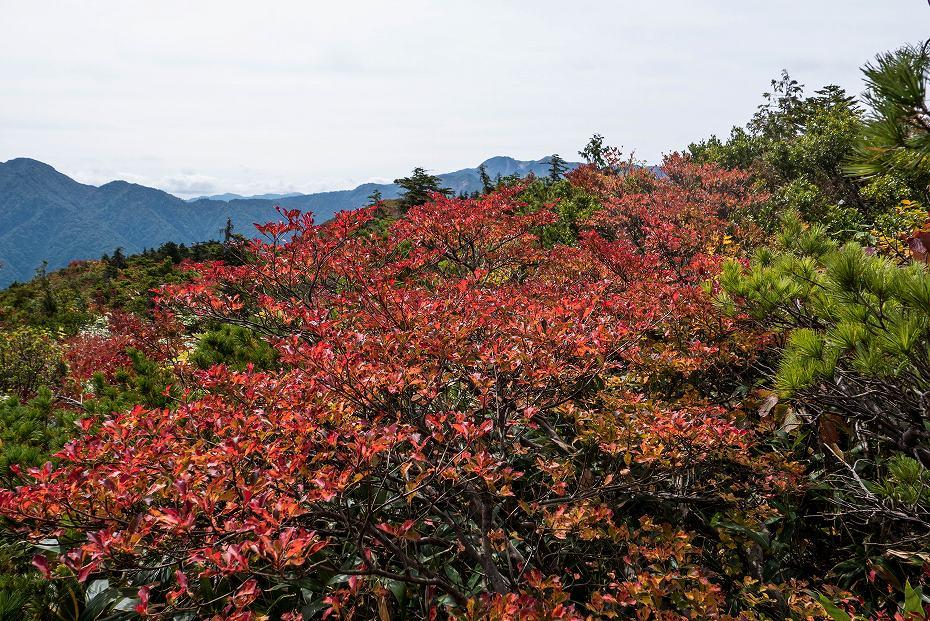 2017.10.01北縦走路_三方岩岳~妙法山14