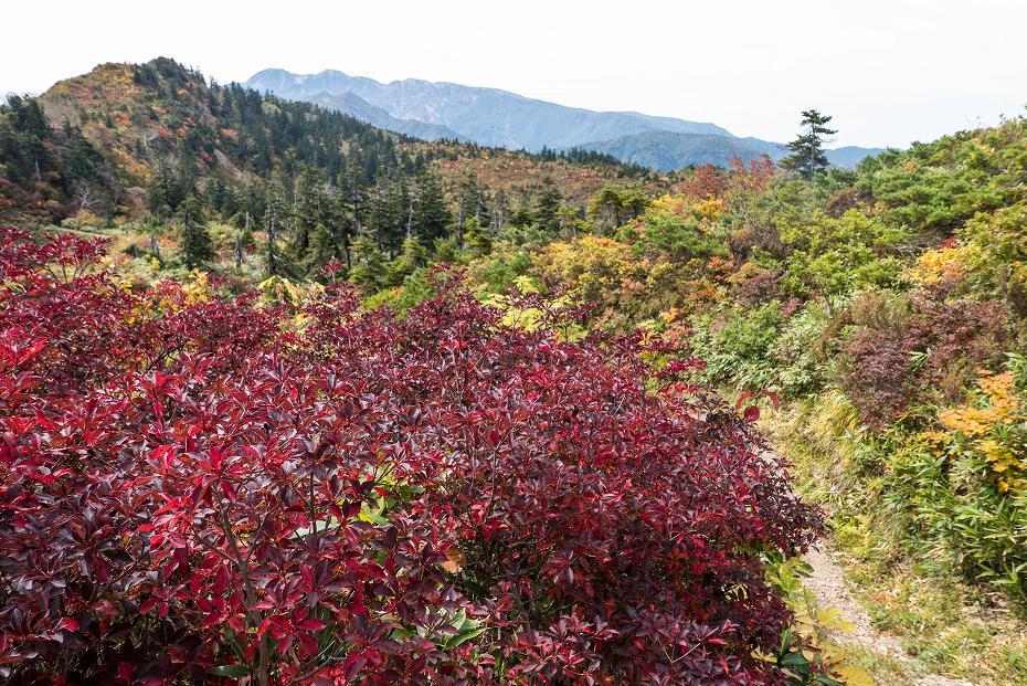 2017.10.01北縦走路_三方岩岳~妙法山11