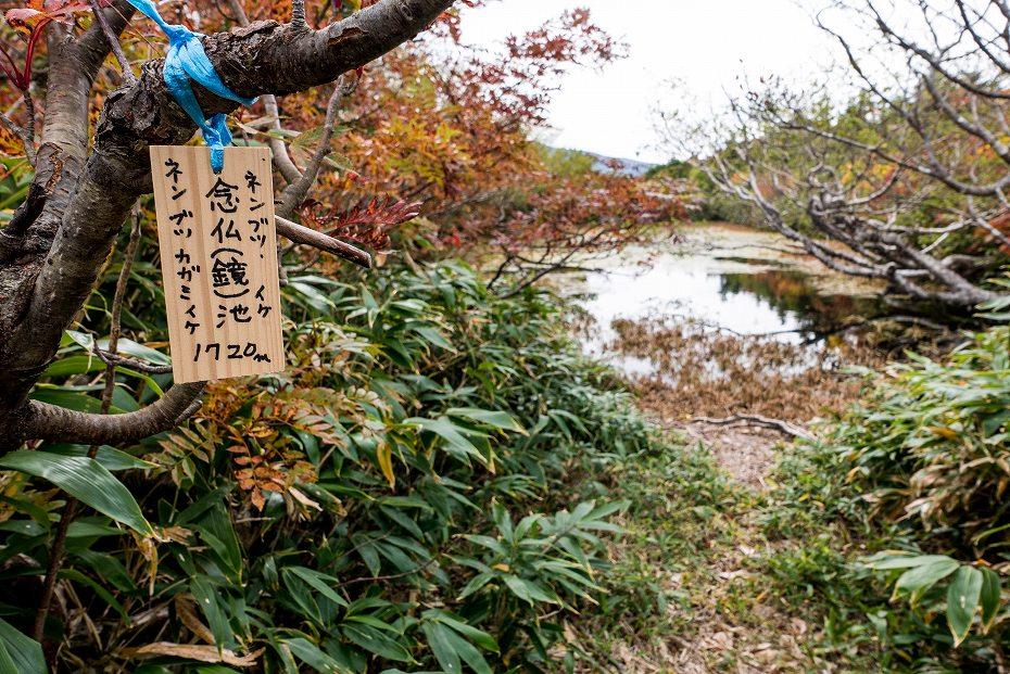 2017.10.01北縦走路_妙法山~ゴマ平避難小屋6