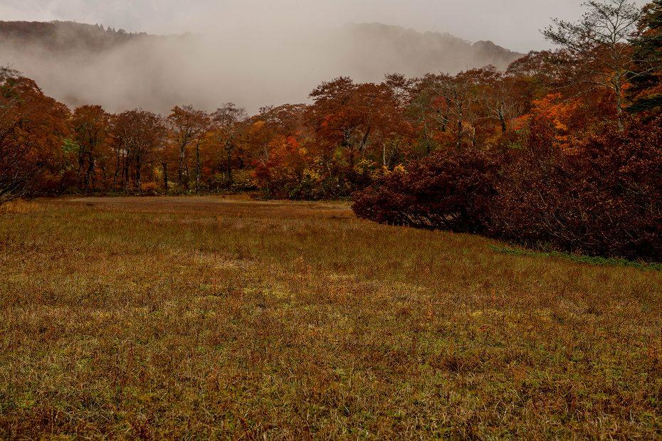 2017.10.14籾糠山_天生湿原~山頂.5