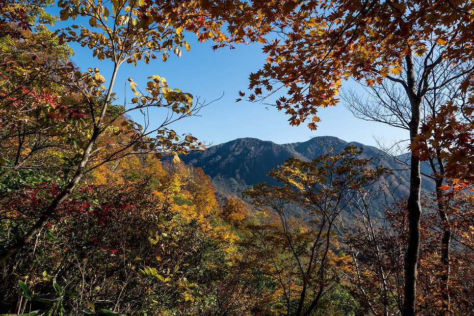 2017.10.26三ノ峰登山口~杉峠_34