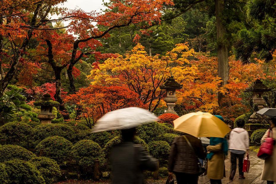 2017.11.09那谷寺の紅葉.5