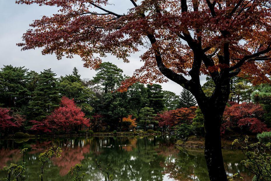 2017.11.17.兼六園の紅葉.2