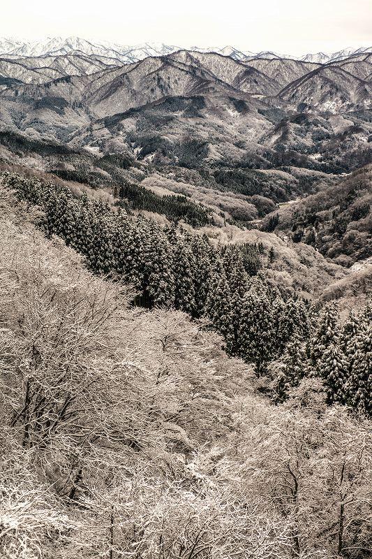 2017.12.09 医王山の麓 2