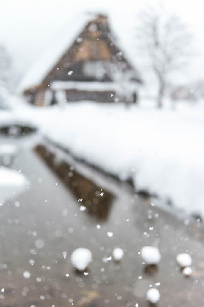2017.12.13白川郷 降り続く雪 10