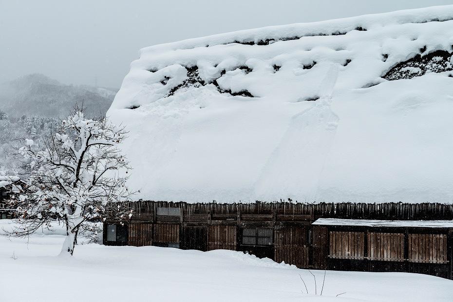 2017.12.13 白川郷の雪景色 13