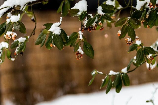 2017.12.13 白川郷の雪景色 12