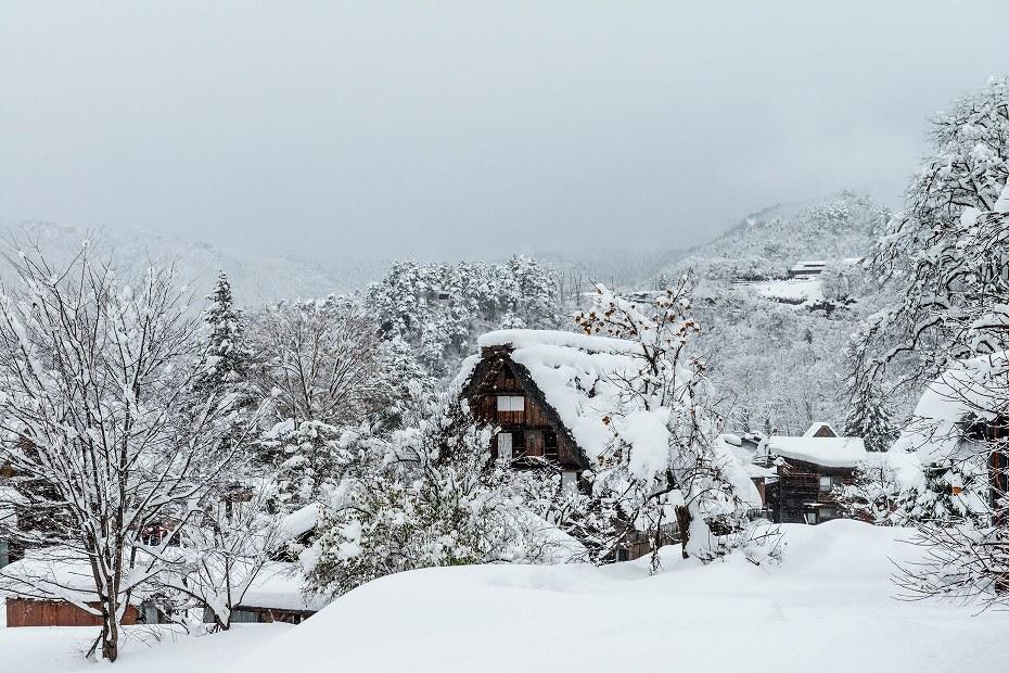 2017.12.13 白川郷の雪景色 8