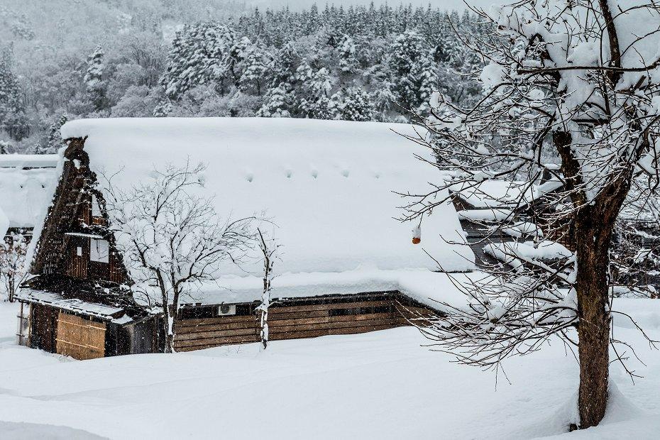 2017.12.13 白川郷の雪景色 9