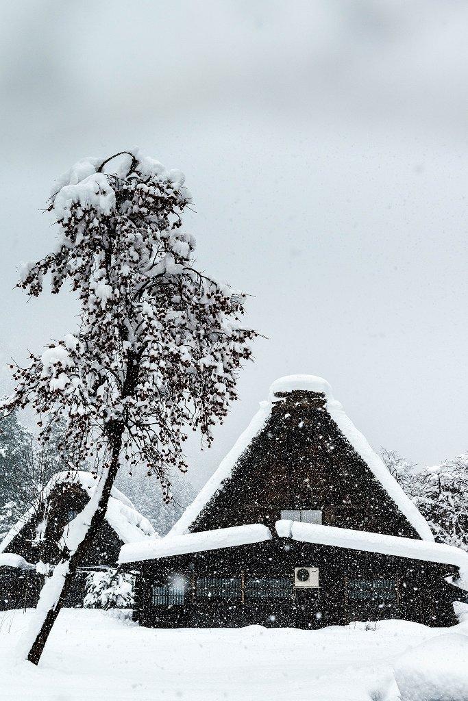 2017.12.13 白川郷の雪景色 3