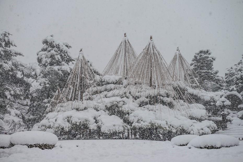 2017.12.17 雪景色の兼六園 15