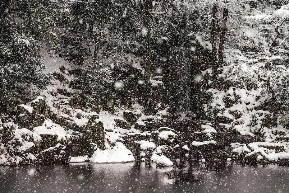 2017.12.17 雪景色の兼六園 14