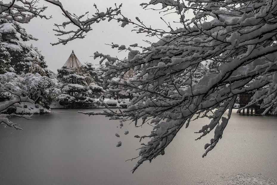 2017.12.17 雪景色の兼六園 16