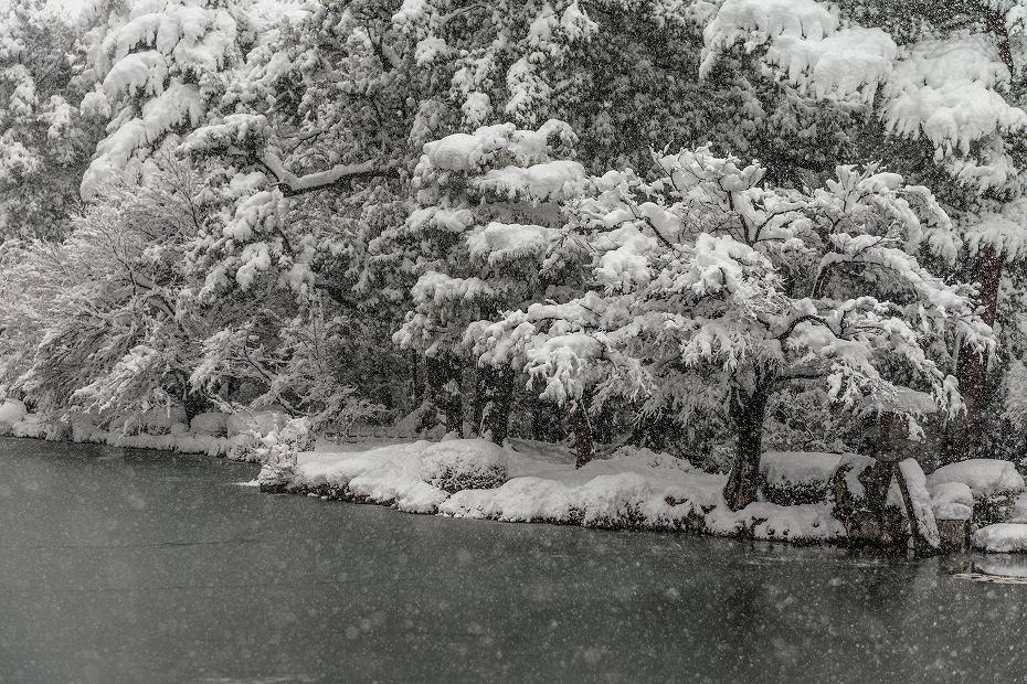 2017.12.17 雪景色の兼六園 8