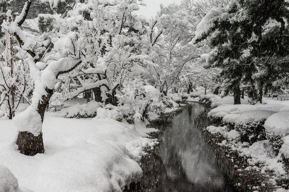 2017.12.17 雪景色の兼六園 7