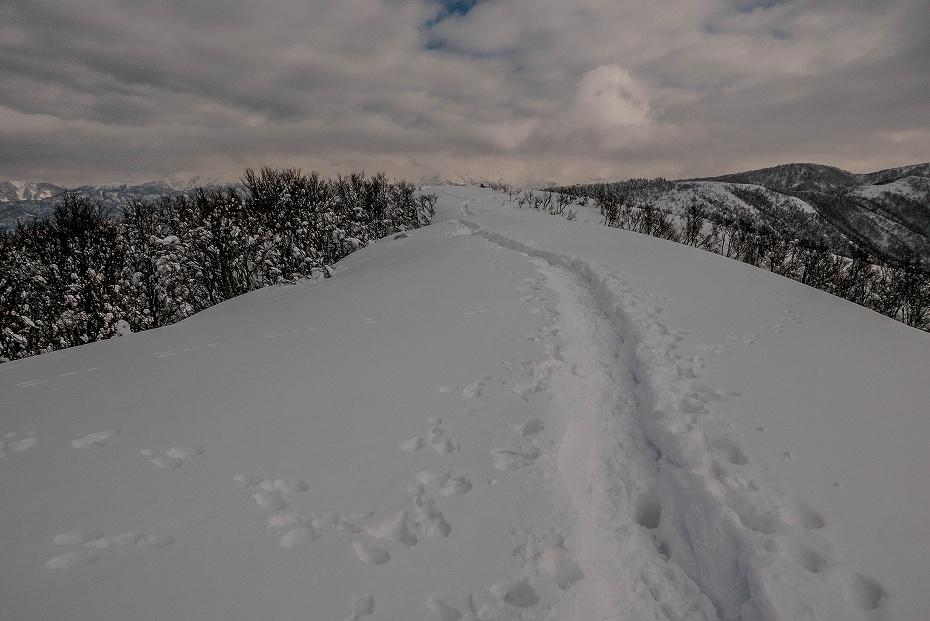 2017.12.22 取立山 6