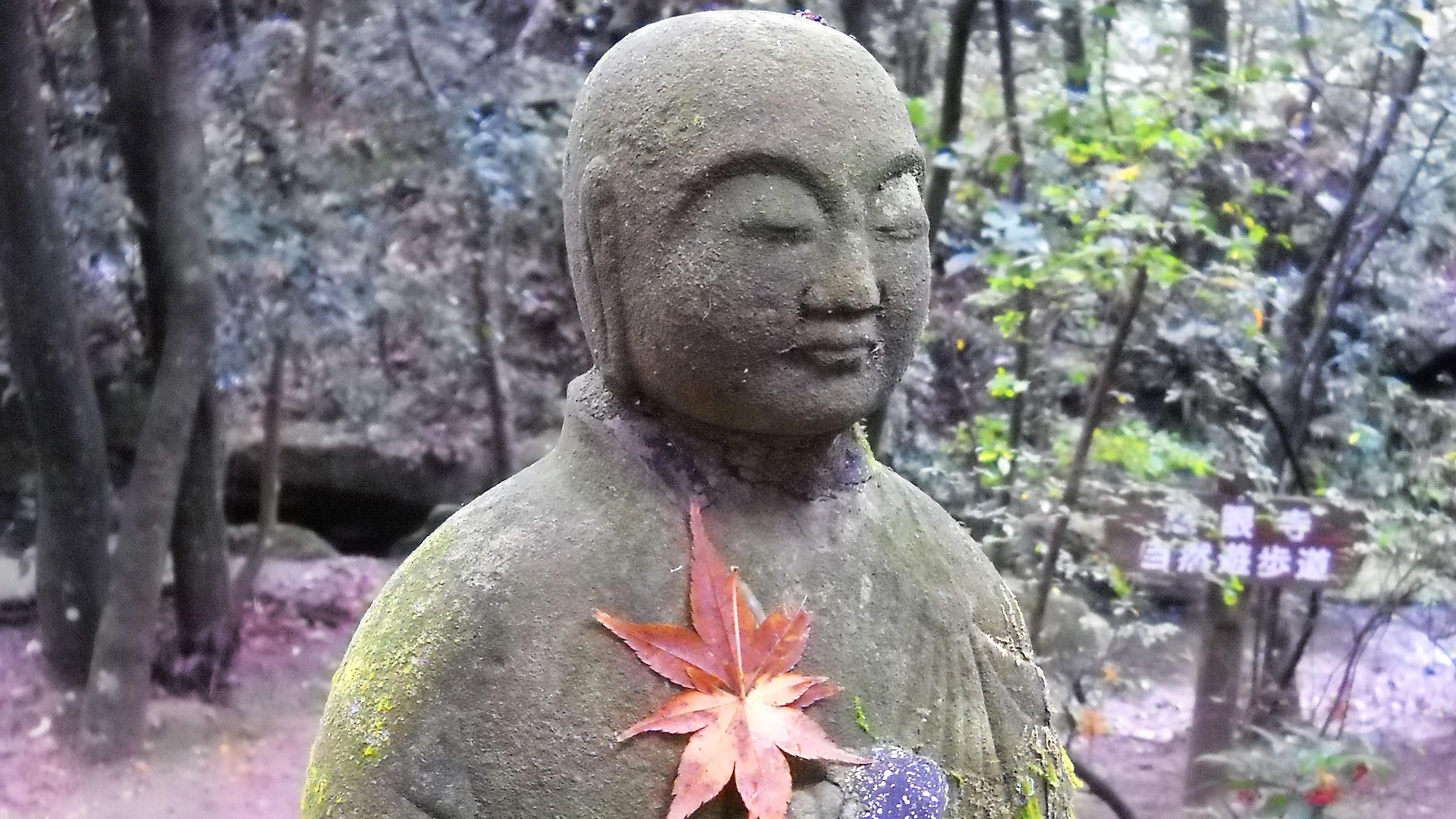 落葉と石仏