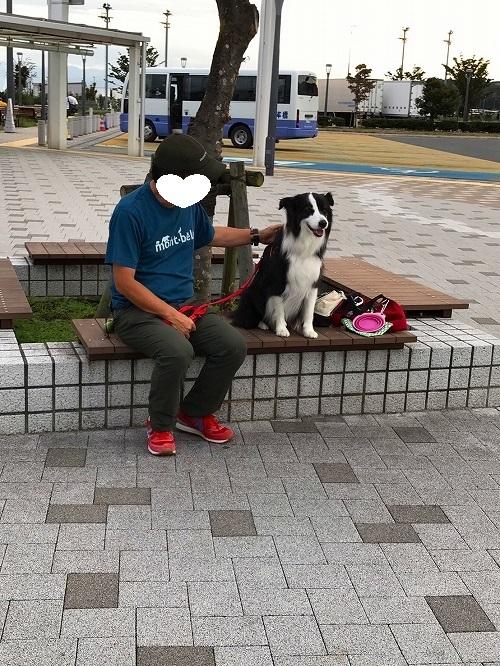 s-IMG_8975_2.jpg