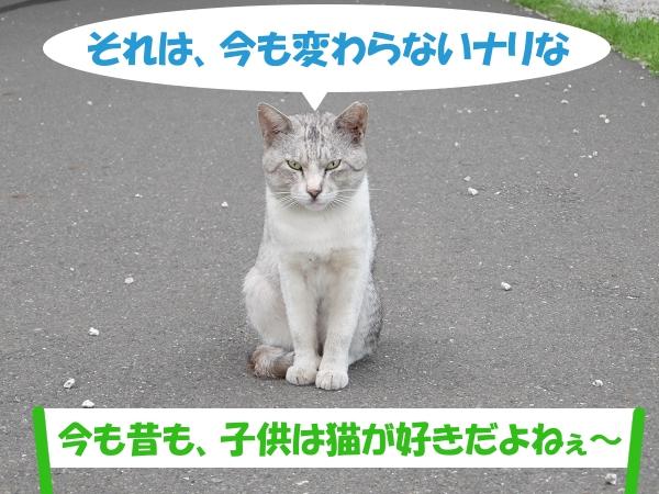 それは、今も変わらないナリな 「今も昔も、子供は猫が好きだよねぇ~」