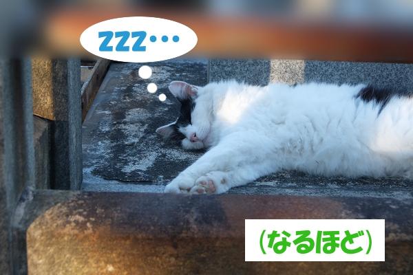 zzz…  (なるほど)