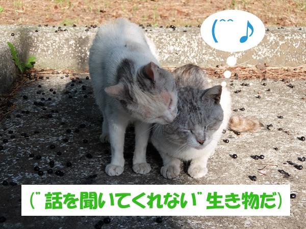 """(""""話を聞いてくれない""""生き物だ)"""