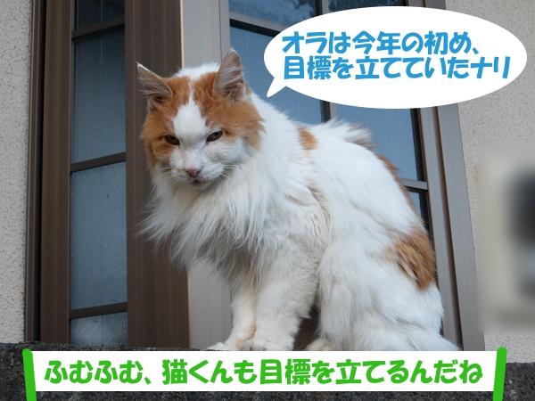 オラは今年の初め、目標を立てていたナリ 「ふむふむ、猫くんも目標を立てるんだね」