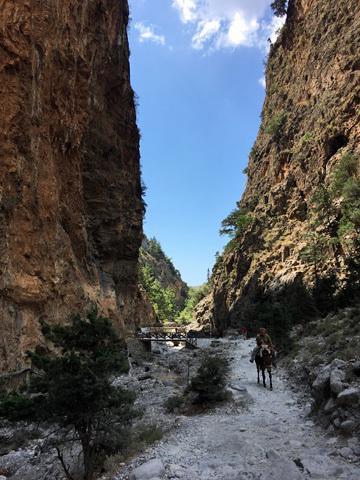 サマリア渓谷21