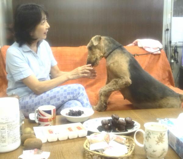 マティユとケニージャ_171021_0011