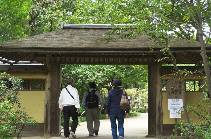 日本庭園-931