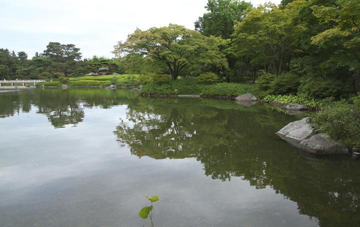 日本庭園-935