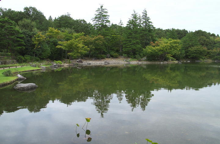 日本庭園-938
