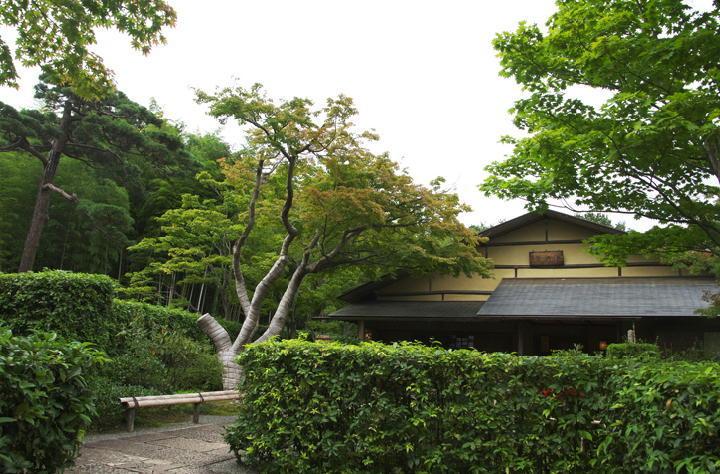 日本庭園-939