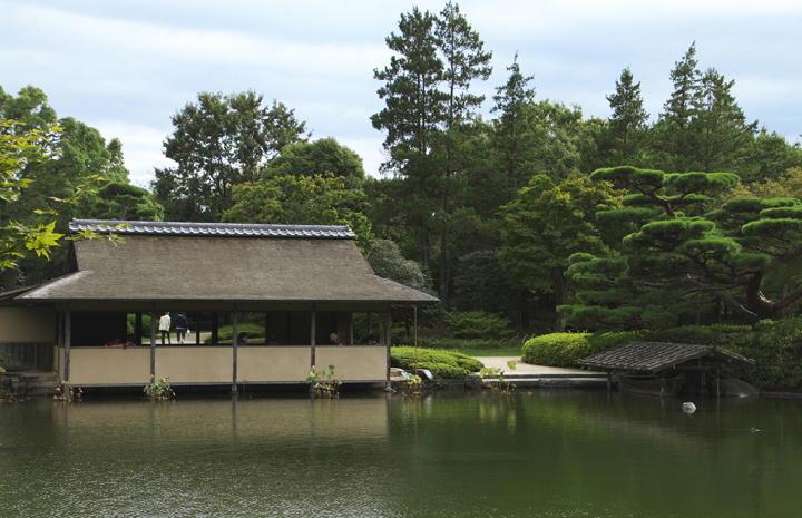 日本庭園-949