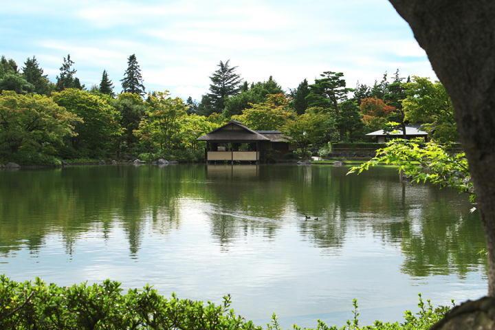 日本庭園-954-11