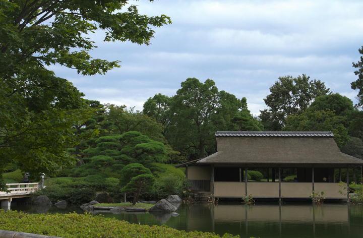 日本庭園-959