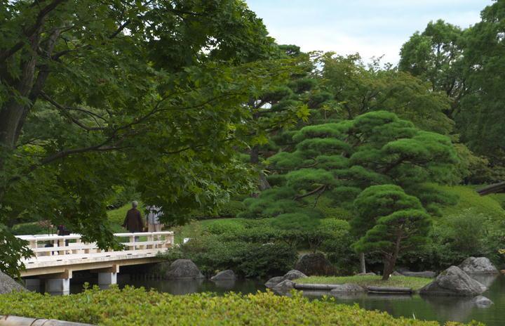 日本庭園-965
