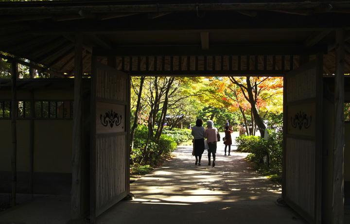日本庭園入り口-331