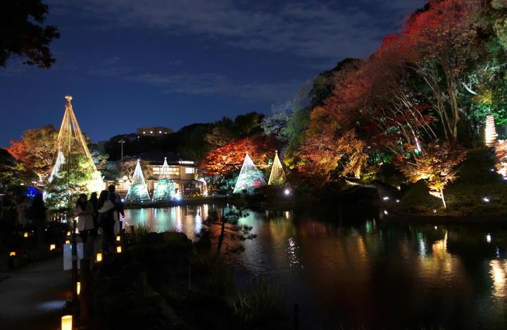 細川邸のライトアップ-695