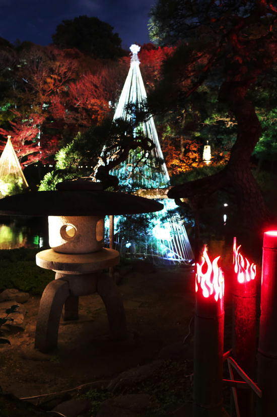 細川邸のライトアップ-689