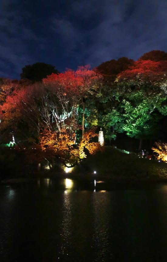 細川邸のライトアップ-692