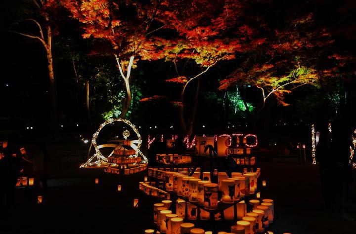 細川邸のライトアップ-735-11